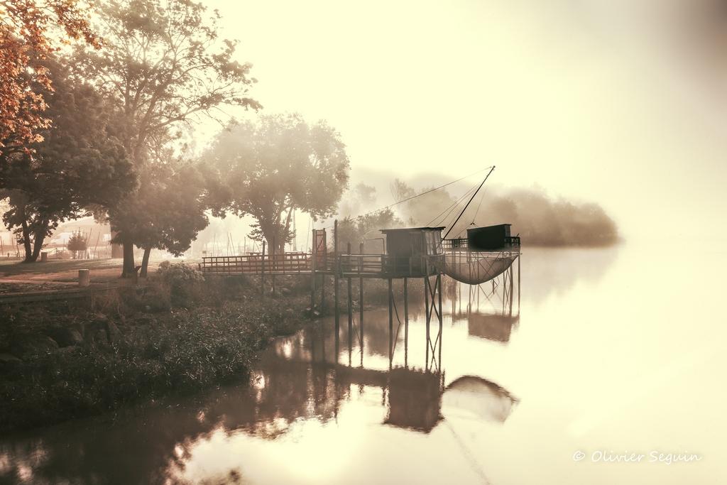 brouillard et soleil